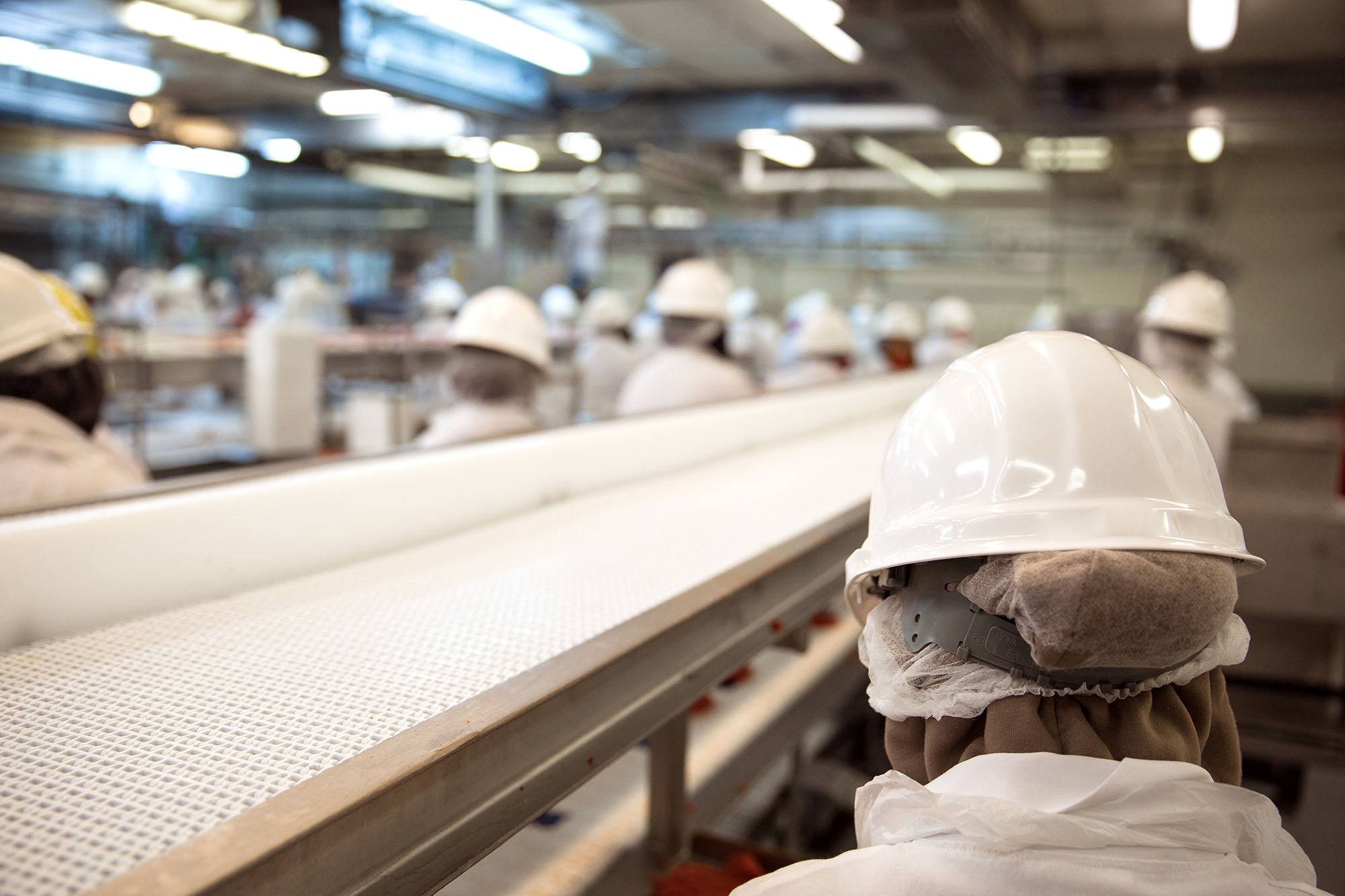 Food processing factory workers, manufacturing industry